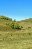 paisaje del otoño de la ladera Fotografía de archivo libre de regalías