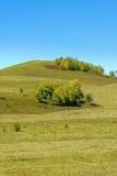 paisaje del otoño de la ladera Foto de archivo libre de regalías