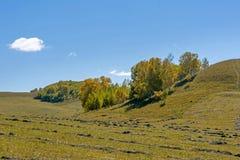 paisaje del otoño de la ladera Fotos de archivo