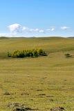 paisaje del otoño de la ladera Fotografía de archivo