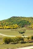 paisaje del otoño de la montaña de cinco colores Fotografía de archivo
