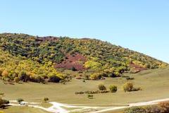 paisaje del otoño de la montaña de cinco colores Fotos de archivo libres de regalías