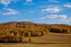 Paisaje del otoño de la pradera Fotografía de archivo