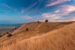 Paisaje del otoño de las colinas de la hierba seca Fotos de archivo libres de regalías