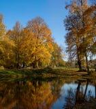 Paisaje del otoño del lago Foto de archivo