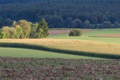 Paisaje del otoño en Baviera Imagen de archivo libre de regalías