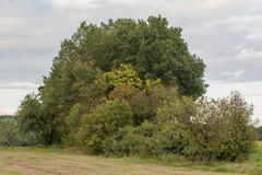 Paisaje del otoño en Baviera Fotos de archivo libres de regalías