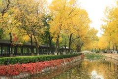 Paisaje del otoño en China imagenes de archivo