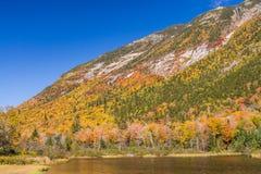 Paisaje del otoño en el bosque del Estado blanco de la montaña, nuevo Hampshi foto de archivo libre de regalías