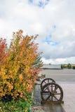 Paisaje del otoño en el cuadrado de Saihaiba Foto de archivo