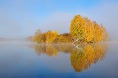 Paisaje del otoño en el lago Foto de archivo libre de regalías