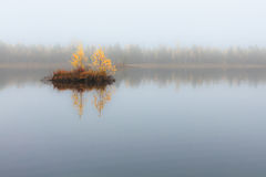 Paisaje del otoño en el lago con la isla minúscula con los árboles y las hojas del amarillo Imagen de archivo