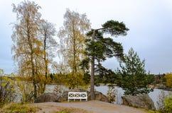 Paisaje del otoño en el lago con un banco Foto de archivo libre de regalías