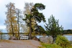 Paisaje del otoño en el lago con un banco Imagenes de archivo