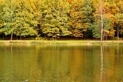 Paisaje del otoño en el lago Parque en la caída Otoño de oro Foto de archivo libre de regalías