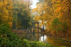 Paisaje del otoño en el parque foto de archivo