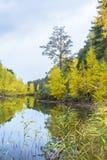Paisaje del otoño en el río Imagen de archivo libre de regalías