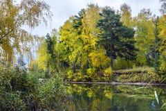 Paisaje del otoño en el río Fotos de archivo