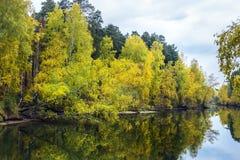 Paisaje del otoño en el río Imagenes de archivo