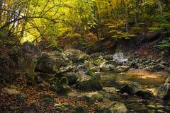 Paisaje del otoño en el río Kokkozka de la montaña Fotografía de archivo libre de regalías