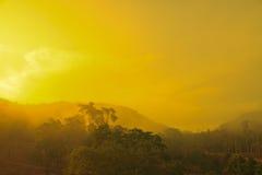 Paisaje del otoño en la mañana brumosa Fotografía de archivo libre de regalías