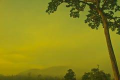 Paisaje del otoño en la mañana brumosa Fotografía de archivo