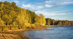Paisaje del otoño en la orilla del río con el bosque y las cañas Rusia, los Urales, Imágenes de archivo libres de regalías
