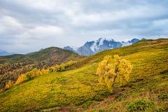 Paisaje del otoño en las montañas Imagen de archivo libre de regalías