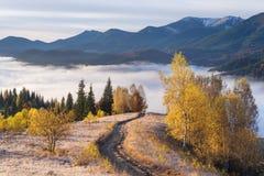 Paisaje del otoño en las montañas Foto de archivo