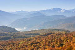 Paisaje del otoño en las montañas de Lago-Naki Imágenes de archivo libres de regalías