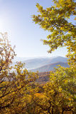 Paisaje del otoño en las montañas de Lago-Naki Imagen de archivo