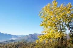 Paisaje del otoño en las montañas de Lago-Naki Imagenes de archivo