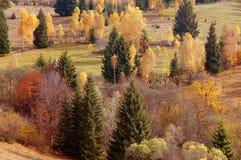 Paisaje del otoño en las montañas de Rumania Fotografía de archivo libre de regalías
