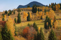 Paisaje del otoño en las montañas de Rumania Fotografía de archivo