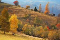 Paisaje del otoño en las montañas de Rumania Foto de archivo