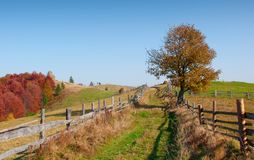 Paisaje del otoño en montañas fotografía de archivo