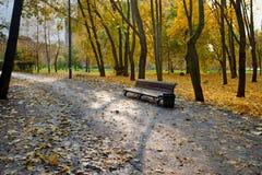 Paisaje del otoño en parque de la ciudad con el banco y la trayectoria que camina Foto de archivo