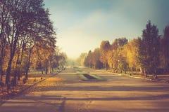 Paisaje del otoño en parque de la mañana Vista de árboles coloridos en el callejón Foto de archivo libre de regalías