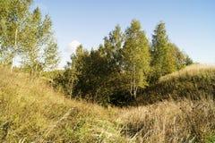 Paisaje del otoño en terreno rural Imagenes de archivo