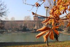 Paisaje del otoño en Turín, Piamonte, Italia Imagen de archivo libre de regalías