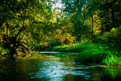 Paisaje del otoño en un lago en Rusia central Foto de archivo libre de regalías