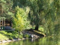 Paisaje del otoño a lo largo del canal de agua Imagen de archivo libre de regalías