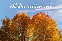 Paisaje del otoño - los tops de árboles amarillo-naranja contra el cielo azul y la inscripción hola, otoño - imagen imagen de archivo