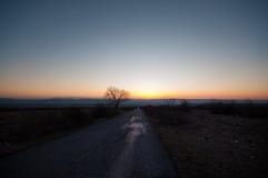Paisaje del otoño o del invierno con el camino y los árboles La puesta del sol de los haces luminosos del oro En un fondo de las  Imágenes de archivo libres de regalías