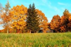 Paisaje del otoño - pequeña casa en árboles anaranjados brillantes del otoño en tiempo soleado del otoño Imagen de archivo libre de regalías