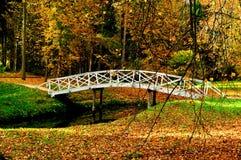 Paisaje del otoño - puente de madera blanco en el parque del otoño entre los árboles de oro del otoño y las hojas de otoño caidas Foto de archivo
