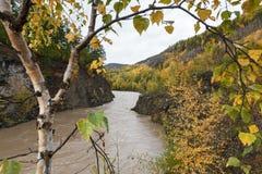 Paisaje del otoño: río que fluye entre la montaña roky Imágenes de archivo libres de regalías