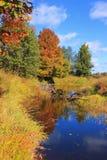 Paisaje del otoño, Rusia Foto de archivo