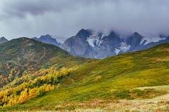 Paisaje del otoño y picos de montaña nevosos Bosque del abedul en luz del sol Canto caucásico principal Mountain View del soporte Imagenes de archivo