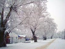 Paisaje del país del invierno imagen de archivo